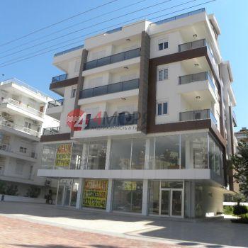 Алтунбаш Anemon Homes с 2 и 3 спальнями